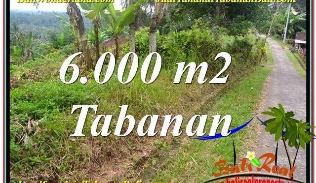 INVESTASI PROPERTY, TANAH MURAH di TABANAN BALI DIJUAL TJTB349