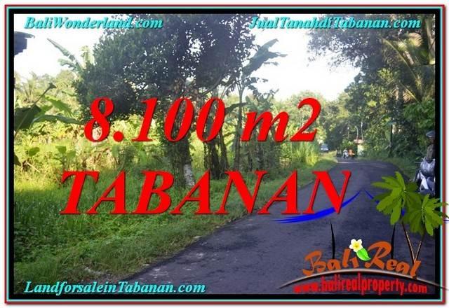 TANAH DIJUAL di TABANAN BALI Untuk INVESTASI TJTB329