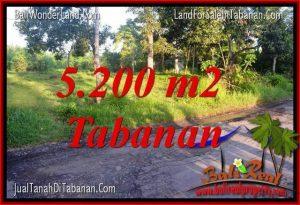 INVESTASI PROPERTY, TANAH MURAH di TABANAN BALI DIJUAL TJTB334