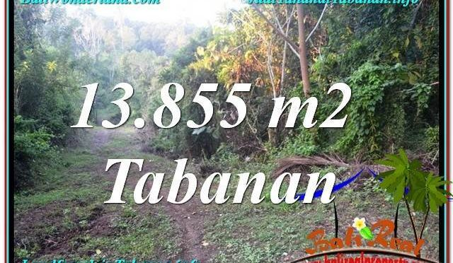TANAH MURAH di TABANAN BALI DIJUAL TJTB335