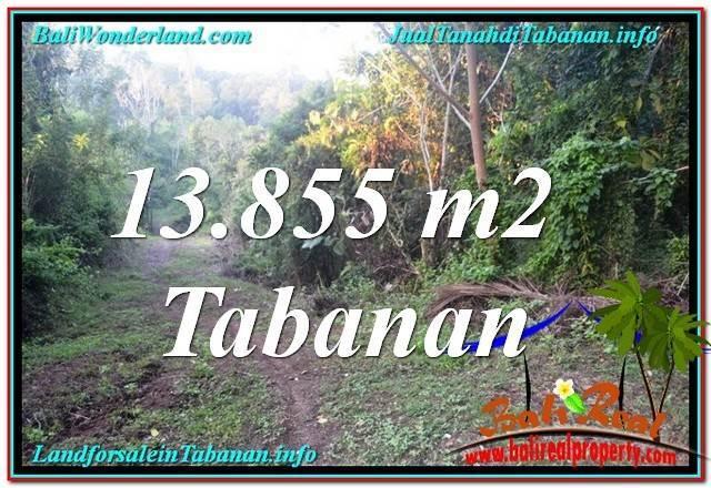 TANAH DIJUAL di TABANAN BALI 13,855 m2 View Kebun dan Sungai