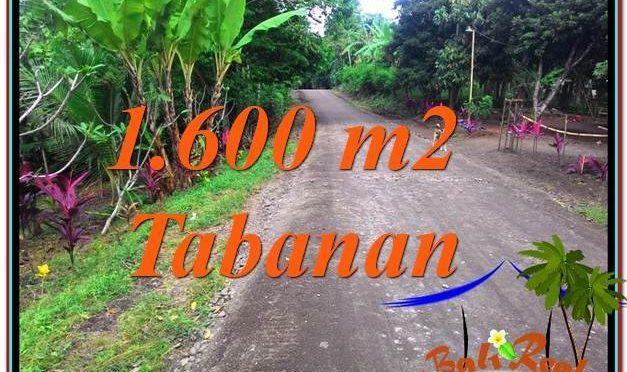 TANAH di TABANAN BALI DIJUAL MURAH TJTB337