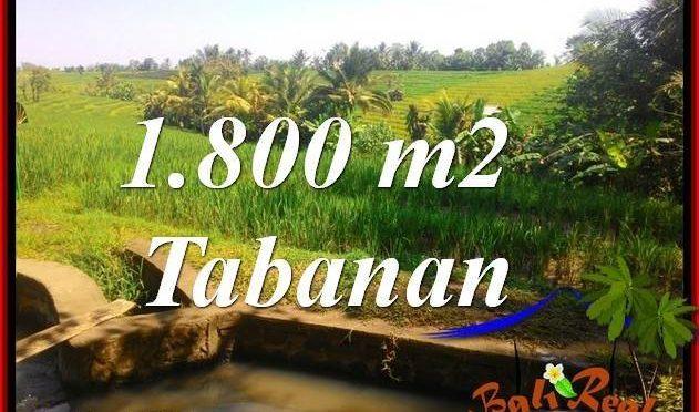 JUAL TANAH di TABANAN BALI 1,800 m2  View sawah