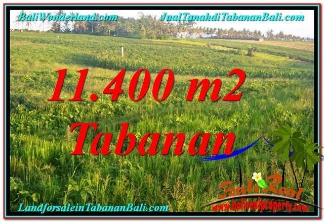 JUAL TANAH di TABANAN 114 Are View Laut, Gunung dan sawah