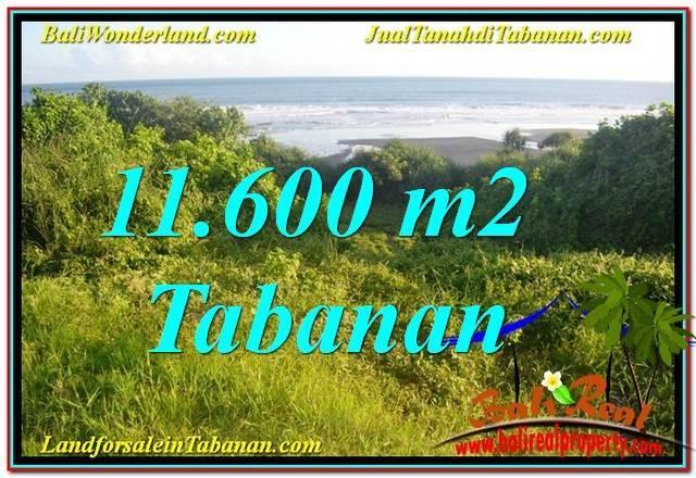 JUAL TANAH MURAH di TABANAN BALI 116 Are View Laut, Gunung dan sawah
