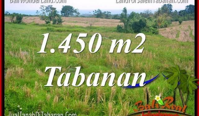 TANAH MURAH DIJUAL di TABANAN 14.5 Are di Tabanan Selemadeg