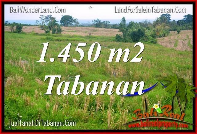 TANAH di TABANAN DIJUAL MURAH 1,450 m2 di Tabanan Selemadeg