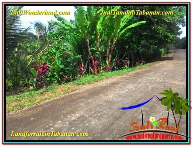 JUAL MURAH TANAH di TABANAN 16 Are View Kebun dan Sungai