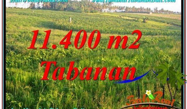 TANAH DIJUAL di TABANAN BALI 11,400 m2  View Laut, Gunung dan sawah