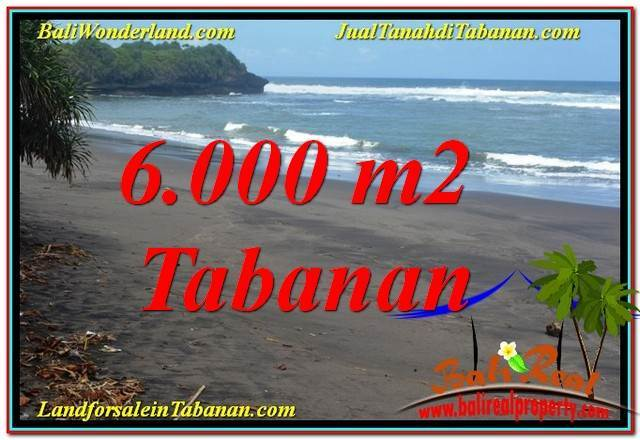 TANAH DIJUAL di TABANAN BALI 6,000 m2 View laut dan sawah