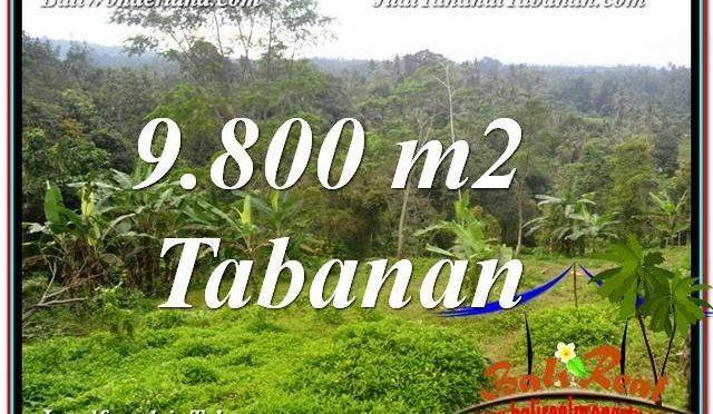 JUAL MURAH TANAH di TABANAN BALI 9,800 m2  View Laut dan sawah