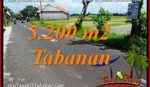 INVESTASI PROPERTI, TANAH MURAH DIJUAL di TABANAN BALI TJTB351