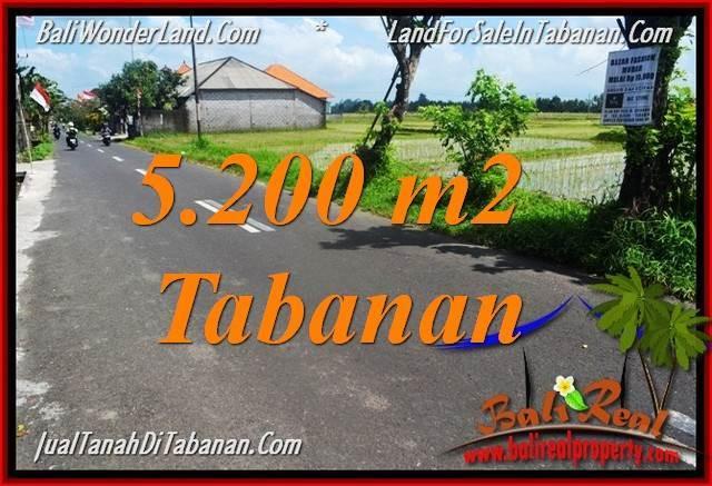 JUAL MURAH TANAH di TABANAN BALI 5,200 m2 View sawah