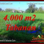 TANAH di TABANAN DIJUAL MURAH TJTB352