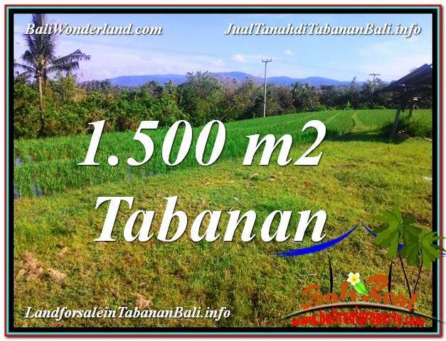 TANAH MURAH di TABANAN BALI DIJUAL 1,500 m2 di Tabanan Selemadeg