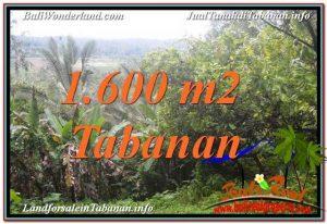 TANAH MURAH di TABANAN JUAL 16 Are View Laut dan sawah