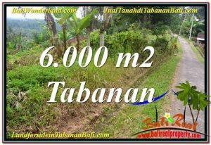 TANAH DIJUAL di TABANAN 60 Are View Laut dan sawah
