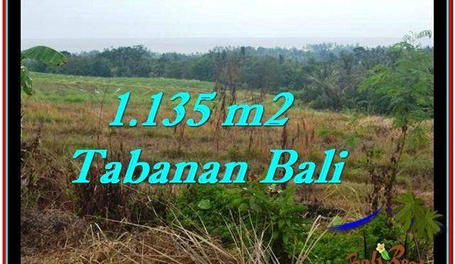 TANAH MURAH JUAL di TABANAN BALI 1,135 m2  View sawah, laut dan gunung