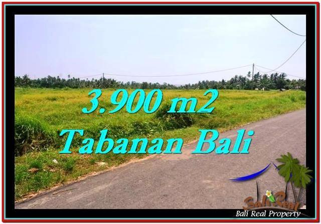 DIJUAL TANAH di TABANAN Untuk INVESTASI TJTB258