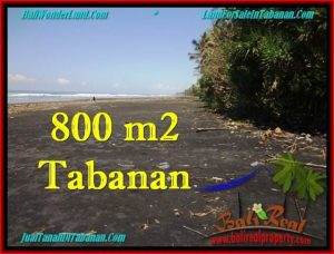 TANAH di TABANAN BALI DIJUAL MURAH 800 m2 di Tabanan Selemadeg