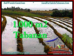 JUAL TANAH MURAH di TABANAN 1,000 m2  View sawah, gunung dan laut