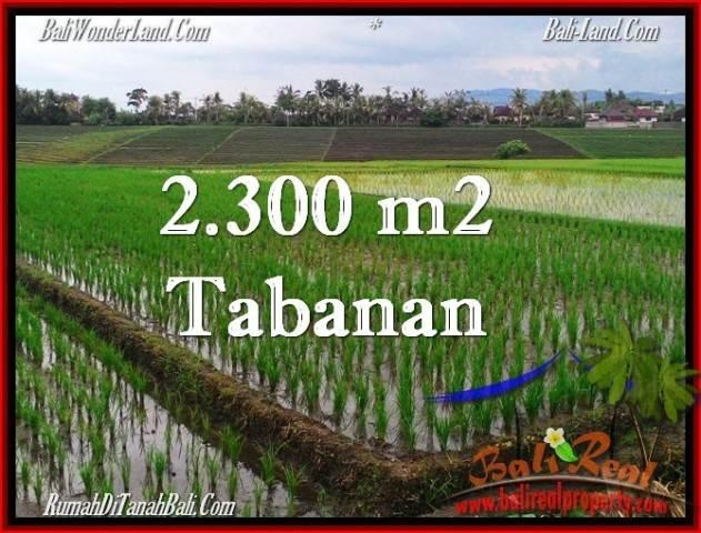 JUAL TANAH MURAH di TABANAN 2,400 m2 View Laut, Gunung dan sawah
