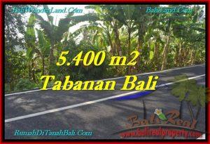 TANAH di TABANAN BALI DIJUAL MURAH Untuk INVESTASI TJTB241