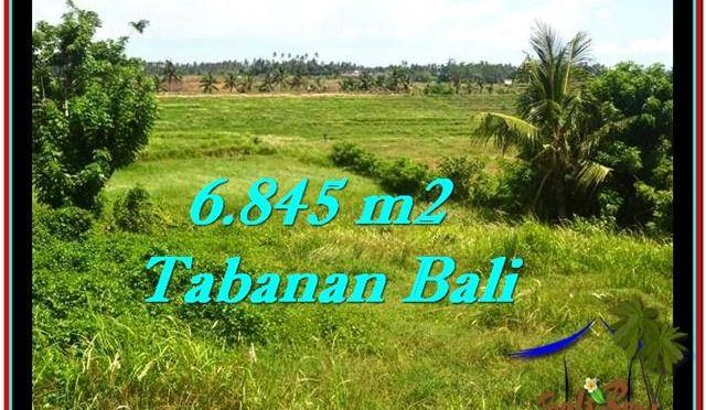 TANAH di TABANAN DIJUAL MURAH 68.45 Are di Tabanan Selemadeg