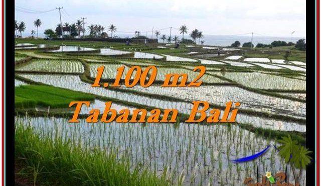 DIJUAL TANAH di TABANAN Untuk INVESTASI TJTB248