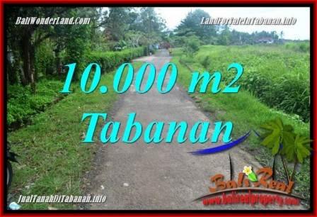 JUAL MURAH TANAH di TABANAN 10,000 m2  View sawah TJTB354