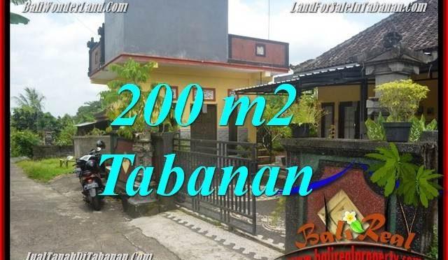 TANAH MURAH di TABANAN DIJUAL 2 Are di Tabanan Penebel