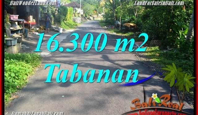 TANAH DIJUAL MURAH di TABANAN 16,300 m2 di Tabanan Selemadeg Barat