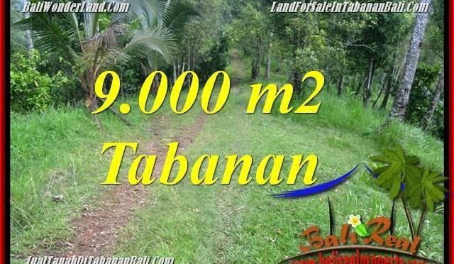 TANAH MURAH DIJUAL di TABANAN 9,000 m2 di Tabanan Selemadeg Timur