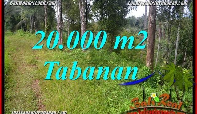 JUAL TANAH di TABANAN Untuk INVESTASI TJTB365